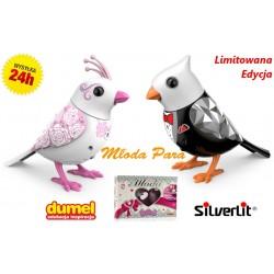 Śpiewające Ptaszki Digibirds Zestaw PARA MŁODA !